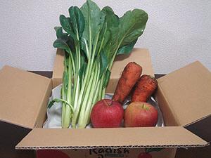 らでぃっしゅぼーやの野菜プレゼント